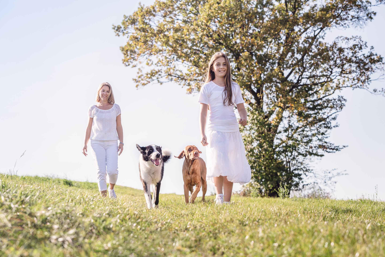 Hundefotografie-Tierlicht-Dogphotography