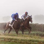 Foto von Tierlicht von Rennpferden im Galopp beim Pferderennen auf einer Rennbahn